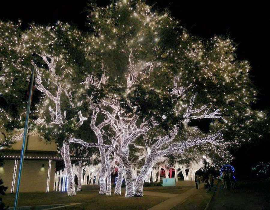 AğaçIşık Süsleme